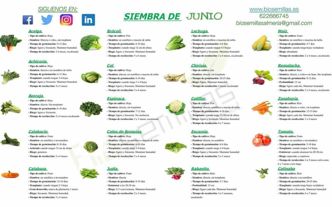 Calendario de siembra de junio