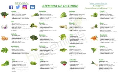 Calendario de siembra de octubre