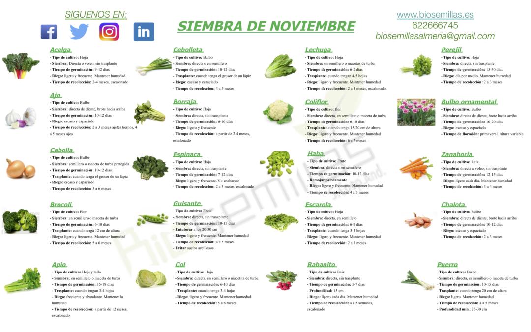 Calendario de siembra de noviembre